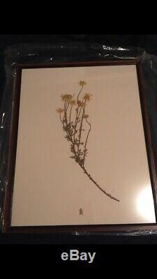 Girl with the Dragon Tattoo Rare Authitic Screen Used Flower Prop